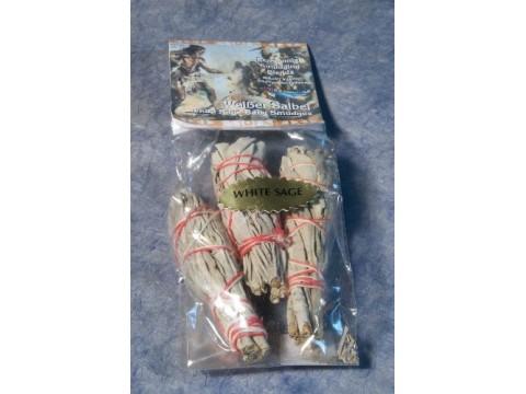 3er Pack weißer Salbei mini